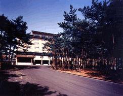 国際佐渡観光ホテル八幡館の外観