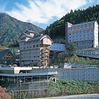 祖谷渓温泉 ホテル秘境の湯の外観
