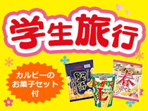 【一般の方もOK!】カルビーのお菓子が付いた学生旅行スペシャル