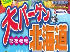 16冬 大バーゲン北海道 3日間【往復ANA】